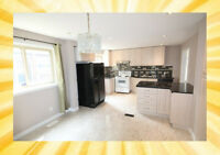 ★Affordable New Renovated 4 BR Detached House (Warden/McNicoll)★