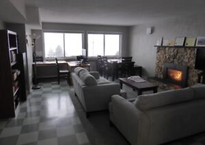 1 bedroom suite available for short term rent