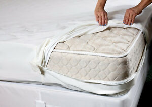 Rent a Bed Bug Heater and Get Rid of Bedbugs in 1 Treatment Oakville / Halton Region Toronto (GTA) image 8