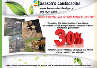 AUGUST SPECIAL- ALL STUMPS REMOVAL 30% OFF