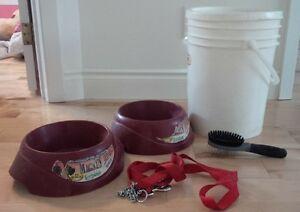 2 dog bowls, food bin, leash, and brush Kitchener / Waterloo Kitchener Area image 1