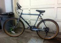 Velo de route - road bicycle
