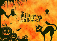 TRICK or TREAT!  HALLOWEEN Magic Shows by COOL Magician from $85