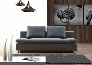 Sofa bed with storage and multiple back positions