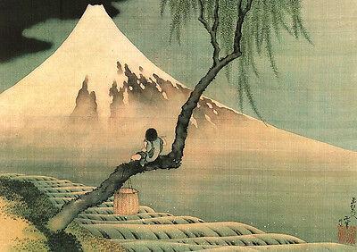 Hokusai Kunstdruck Boy on Mount Fuji 40,5 x 50,5 cm