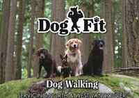 North And West Vancouver Dog Walking Service
