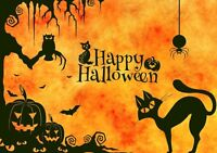 Halloween Magic Classes 4 PA Days/After School Programs/Parties