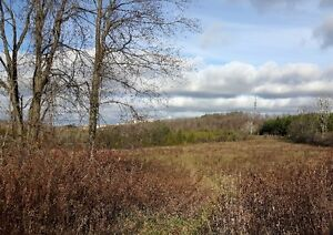 FANTASTIC 47 ACRE PARCEL ON THE EDGE OF TOWN Kitchener / Waterloo Kitchener Area image 4