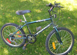 Rock Raleigh Boy's Bicycle - Turquoise