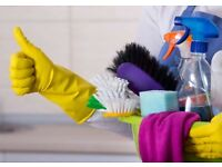 Domestic Cleaning - reliable, efficient cleaner available