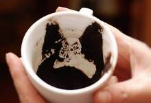 Turkish. Coffee cup Readings / Psychic / Fortune Teller Bondi Junction Eastern Suburbs Preview