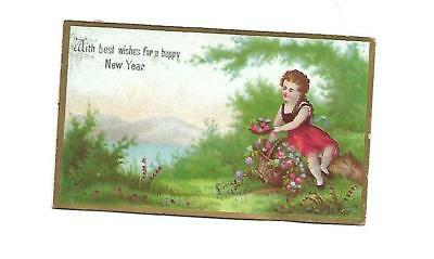 With Best Wishes for a Happy New Year Girl Sitting Lake Mtns Vict Card c 1880s