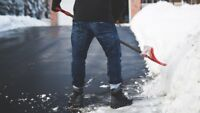 Driveway Snow Removal Guy