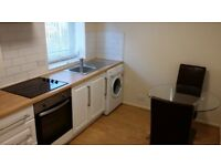 Superb duplex 1 bedroom apartment 100 metres Waitrose from 19th February