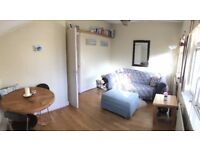 Spacious 1-bed flat on beautiful Abbeville Road. Large, separate living and kitchen areas.