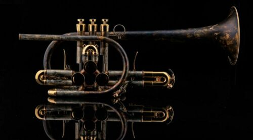 """Schagerl Bb Trumpet Model """"RAWENI"""" Custom with Mouthpiece and Case"""