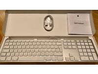 Apple Keyboard + Apple Mighty Mouse