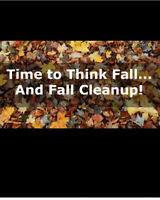 Booking for fall yard cleanups