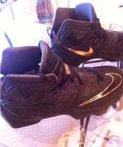 """LeBron James 13 """"Pot of Gold"""" Size 11 Cambridge Kitchener Area image 4"""