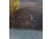 Stone / Road Chippings Free to Collect