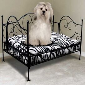 Dog beds (chaise lounge type and soft Hem and Boo). £35. Can be sold separately.