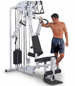 Body Solid Iso-Flex exercise station