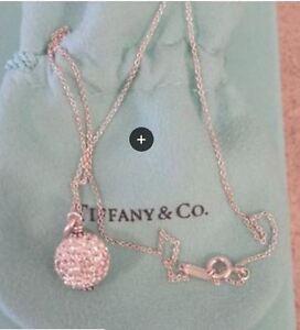 Tiffany necklace and pendant Regina Regina Area image 1