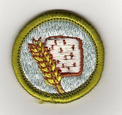 Food Systems Merit Badge Typ H, Plastic Back (1978-1987), Mint!