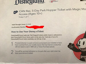 Disneyland 5 Day Park Hopper Pass