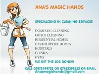 Friendly Domestic cleaner