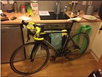 Rare Opportunity: Fondriest TF4 Full Carbon Road Bike