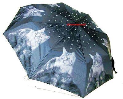 Designer Schirm Taschenschirm mit Katzen Motiv & Kristalle Katze Kitten Neu OVP