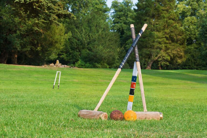 Summer Yard Games For Adults EBay - Backyard games adults