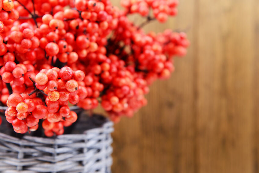 Top Artificial Berries for Crafting