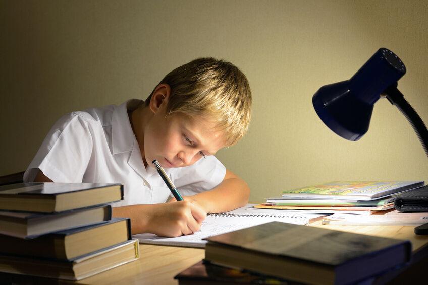 Worauf müssen Sie beim Kauf von Stiftsockellampen achten?