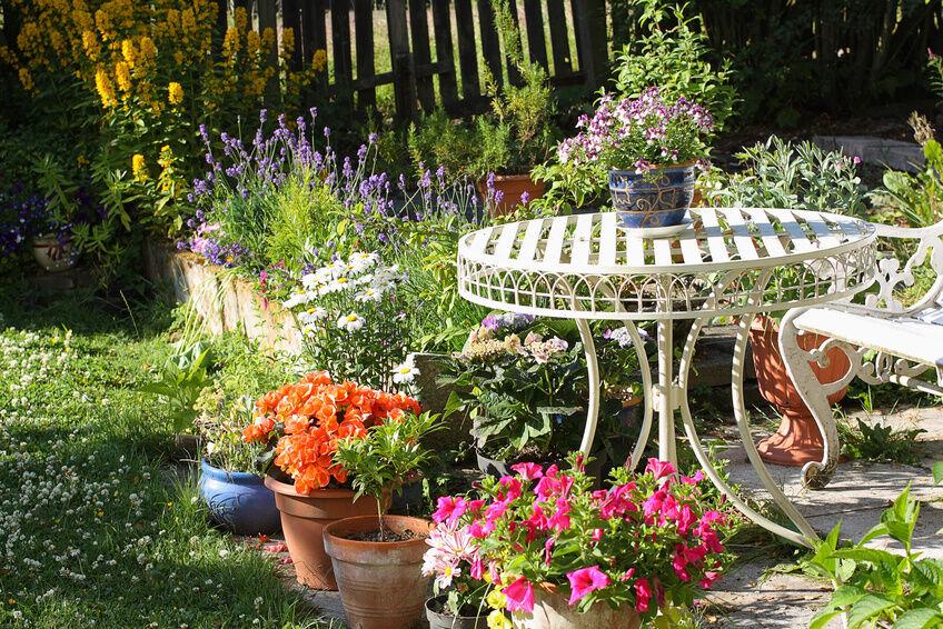 Profi-Blumenkübel und Bewässerungssysteme von Lechuza für Amateur-Gärtner