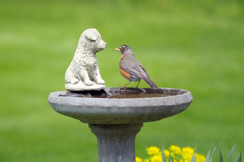 How To Build A Concrete Bird Bath Ebay