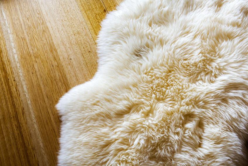 Wohlige Wärme vom Schaf für einen gesunden Schlaf