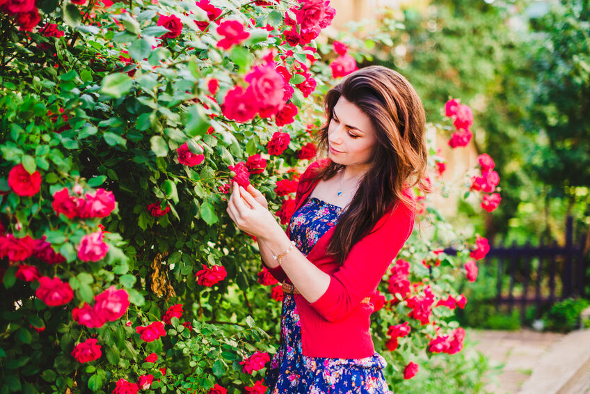 How to Care for Your Rose Garden