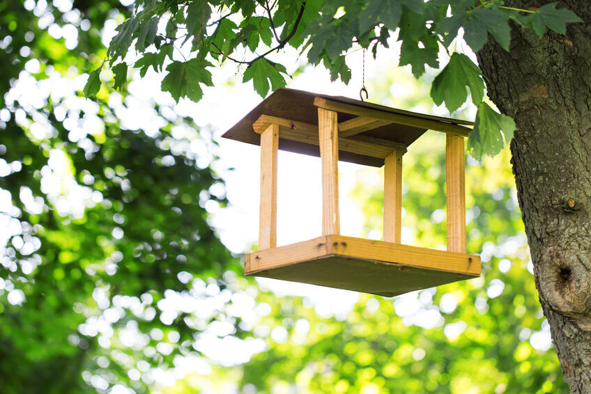 How to make a simple wooden bird feeder ebay for How to build a bird feeder easy
