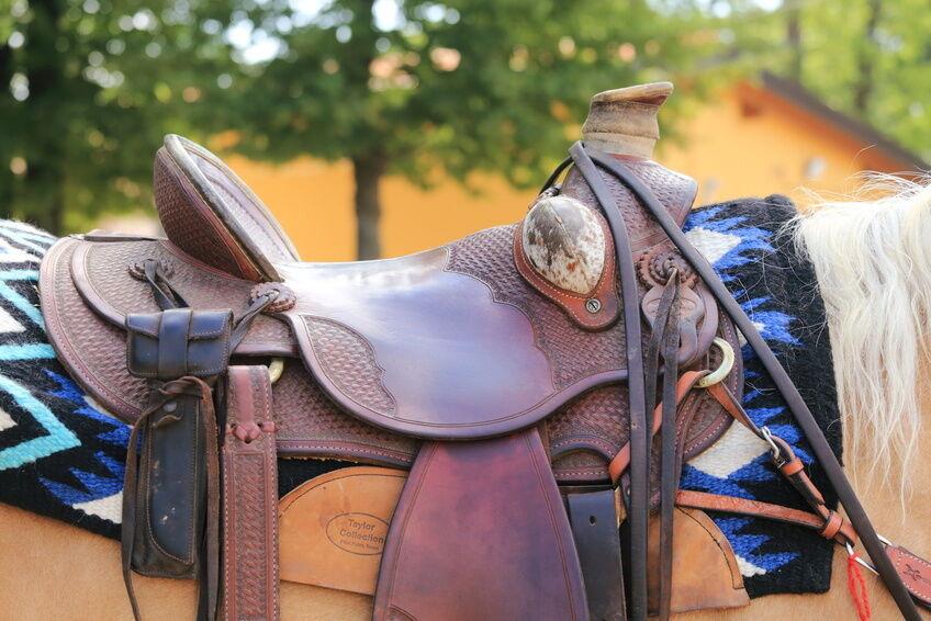 How to Choose a Prestige Saddle for Children