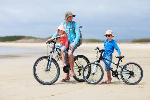 eBay-Ratgeber: Fahrräder