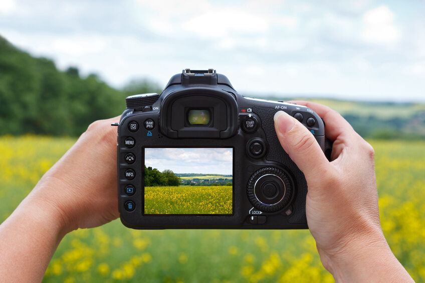 Canon Digital Camera Guide for the Everyday Photographer