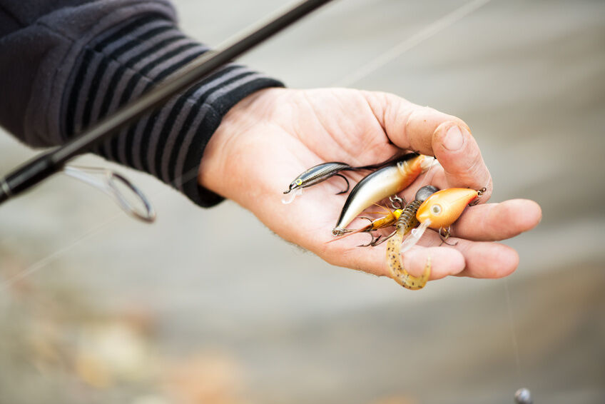 Your Guide to Fishing Lures
