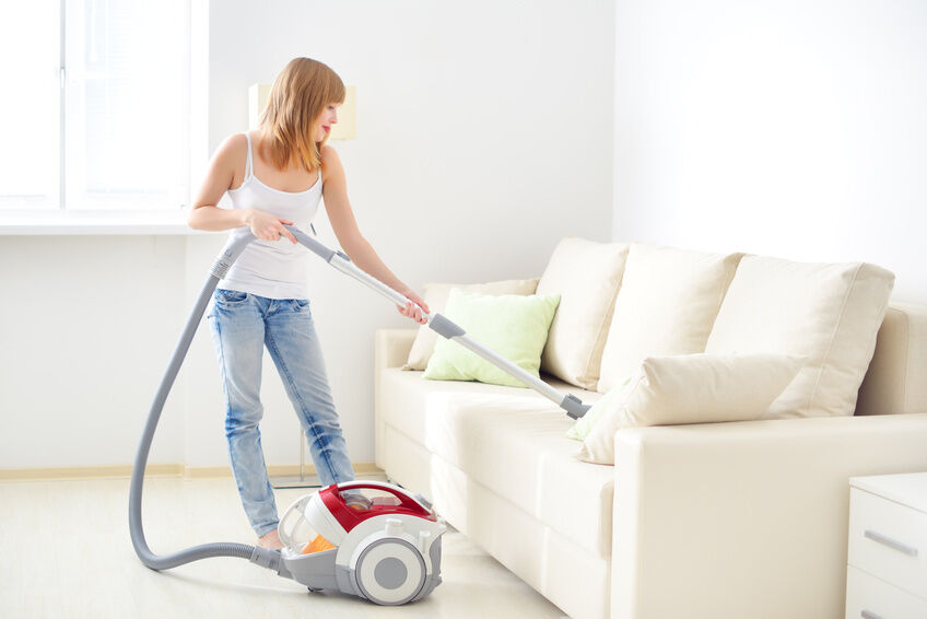 top 10 bagged vacuum cleaners
