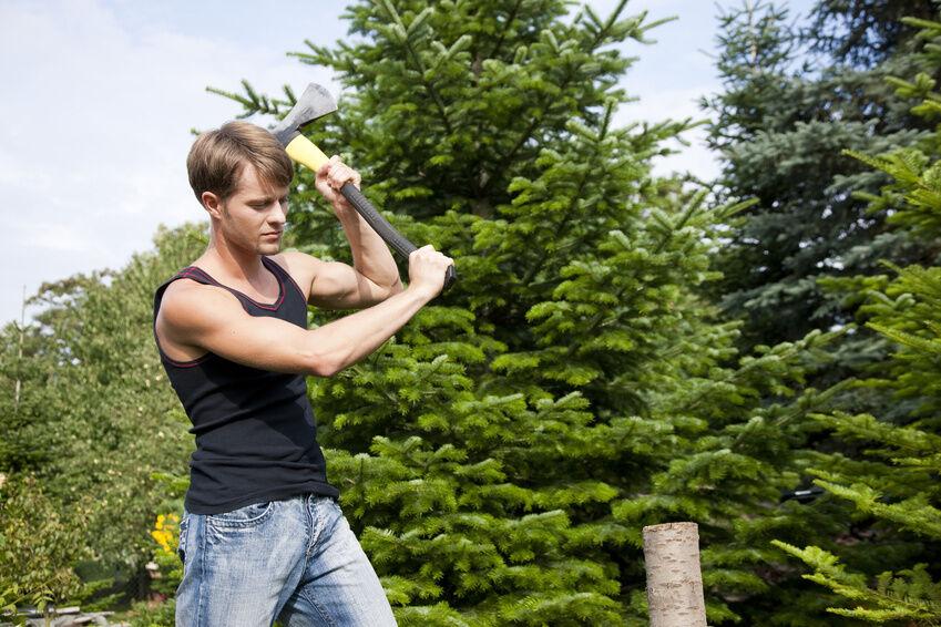 Handlich, praktisch, spaltstark: So finden Sie die richtige Axt für Ihre Gartenarbeit