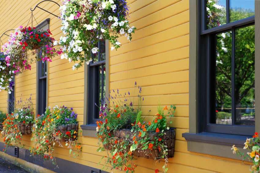 Essential Items for Creating Stunning Hanging Baskets