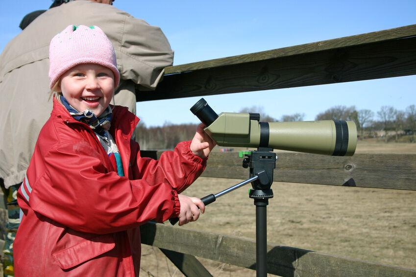 How to Buy a Bird Watching Telescope