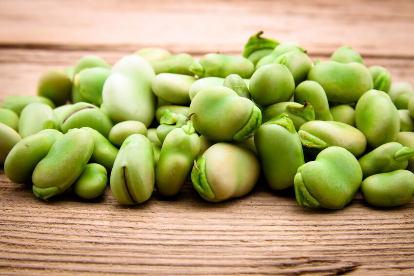 How to Buy Bean Seeds