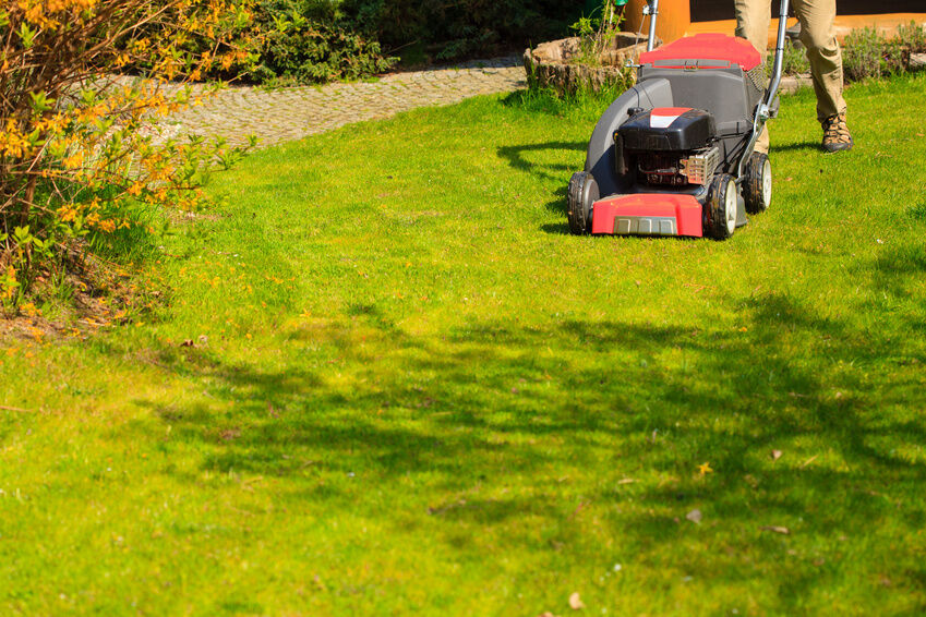 How to Top Dress and Aerate a Lawn